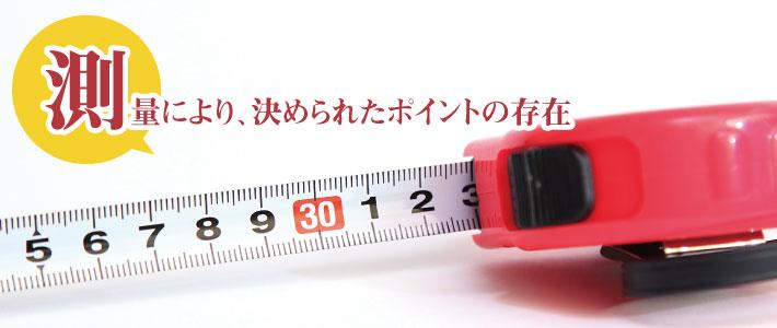 測量により決められたポイントがある
